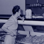 Shopping in the 1950s - The Butcher Shop